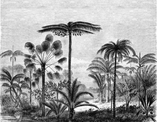 Mural Palm trees 158952