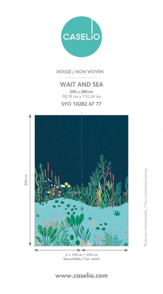 rapport 10282 T1618910060160 530x954 - MURAL WAIT AND SEA 2MX2.80M